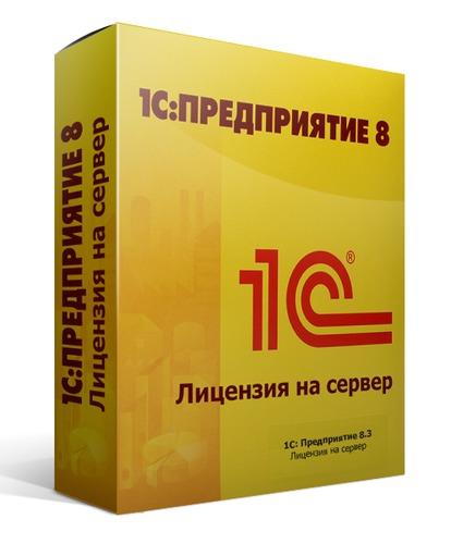 1С:Предприятие 8.2 Лицензия на сервер